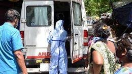coronavirus to be  the dangerous to human beings
