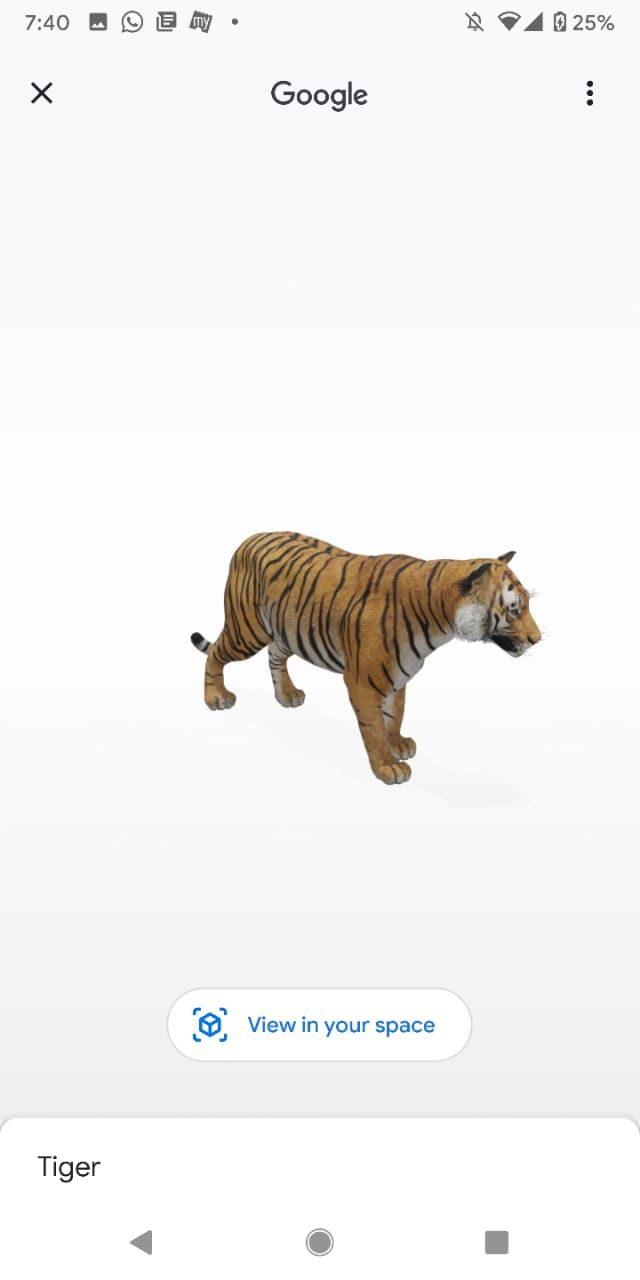 Google 3d Animal Feature Here S How You Can Add An Animal Hologram To Your Surroundings