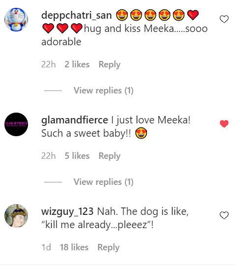 Image: Instagram/Meeka The Talking Husky