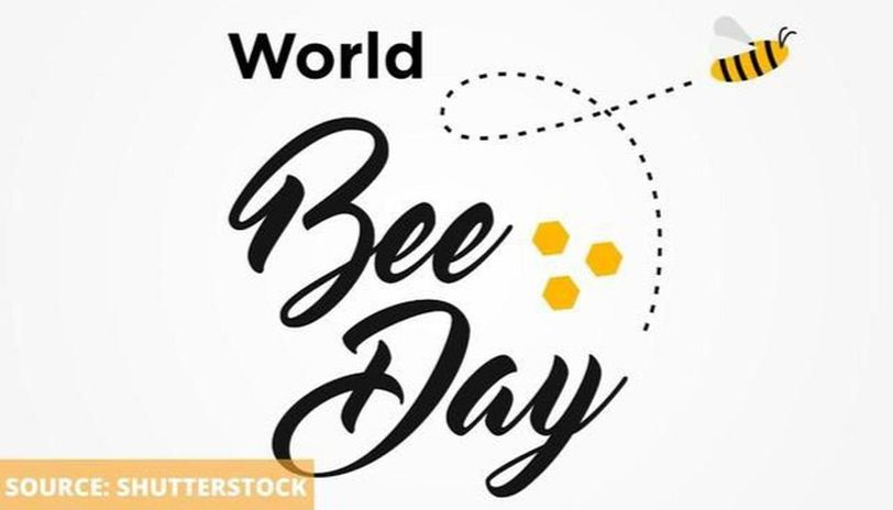 World bee day images
