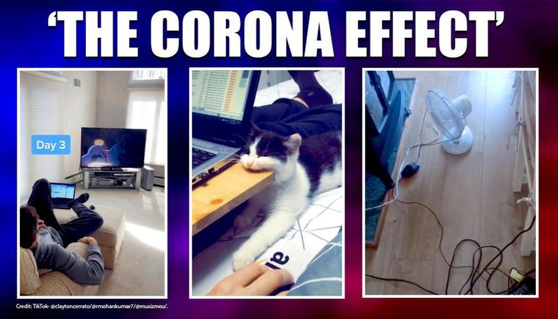 COVID-19: People share hilarious work from home ...