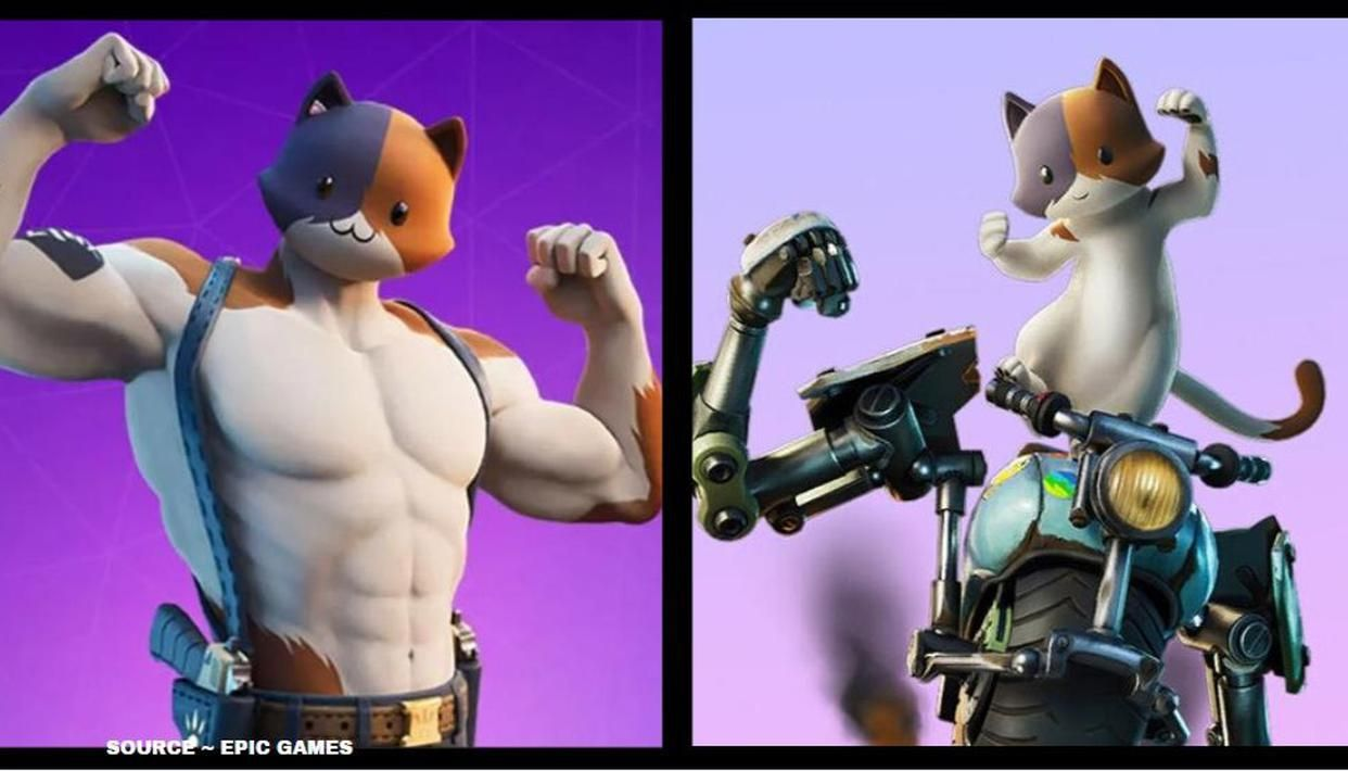 Is Kit Meowscles Son Kit Fortnite Season 3 Origin Explained
