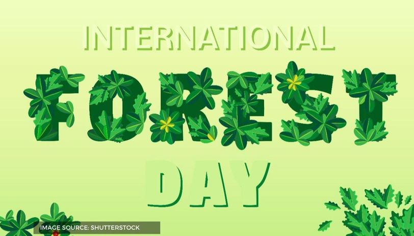when is world forest day celebrated