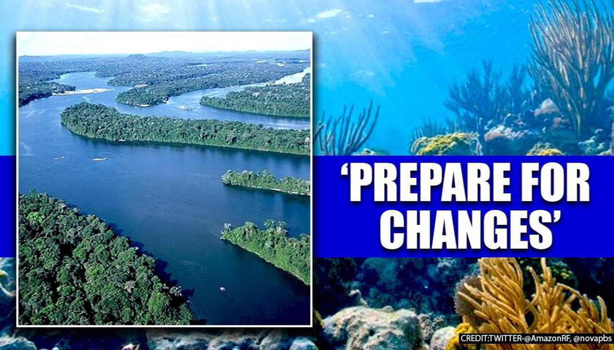Amazon Rainforest, Carribean Coral Reefs could disappear in 50 years: Research