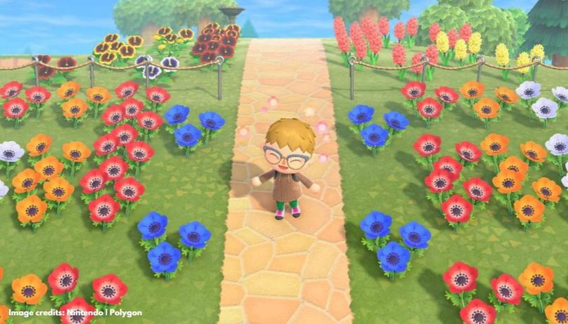 Animal Crossing flower guide