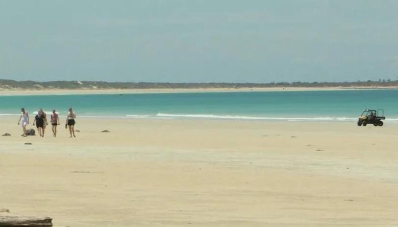 Australia shark attack: Man killed while boarding on Cable beach