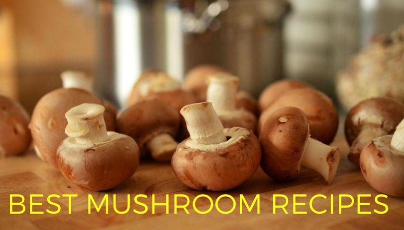 best mushroom recipes