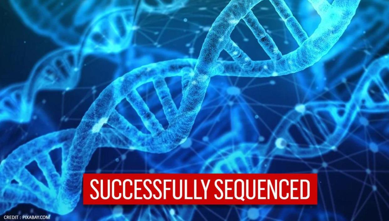 64 Human Genomes successfully sequenced by scientists for the first time ever - Republic TV