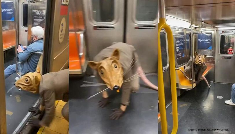 Man impersonating 'giant rat' on New York subway amuses internet | Watch