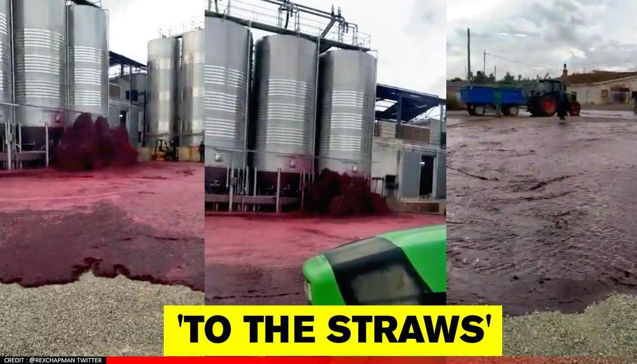 Spain: Red wine floods street after tank breakage in winery, netizens say '2020 continues' - Republic World