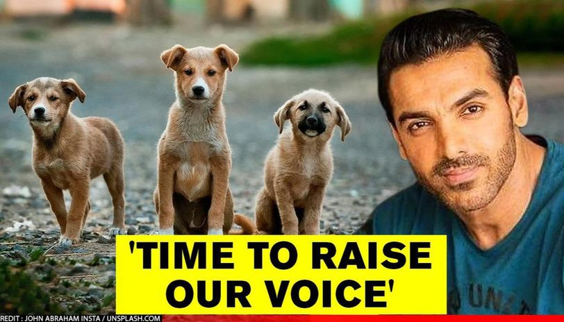John Abraham raises his voice for a surge in fine against animal cruelty