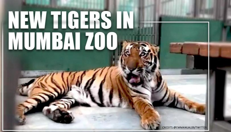 Byculla zoo
