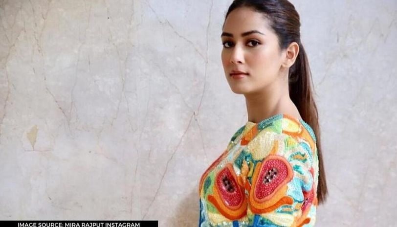 Mira Rajput shares glimpse of her new house with Shahid Kapoor amid lockdown