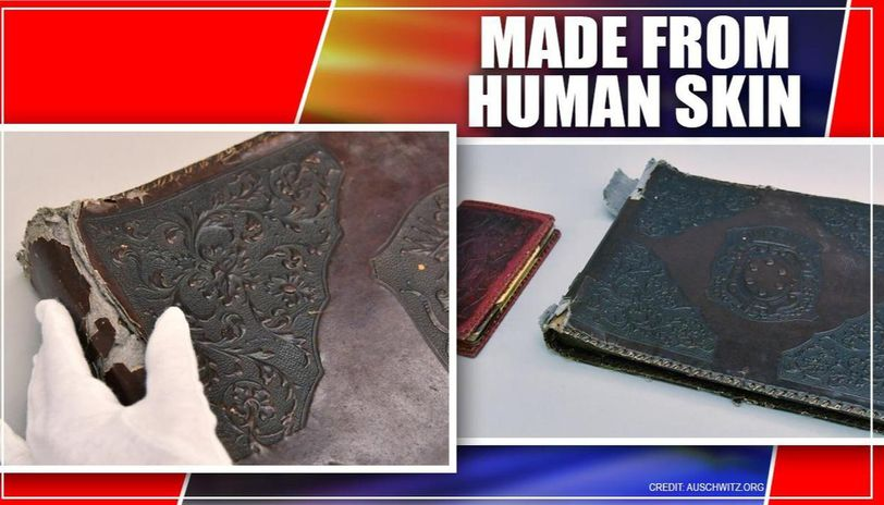 Nazi photo album made from skin of executed prison found in Poland