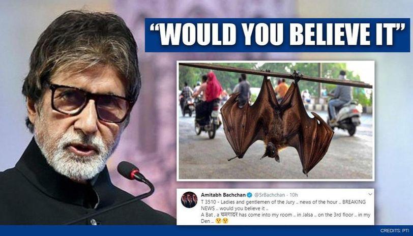 Amitabh Bachchan shares 'breaking news' of bat landing in his room at Jalsa, gets flak