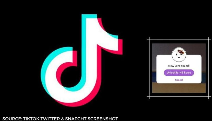 how to get the cockroach filter on tiktok