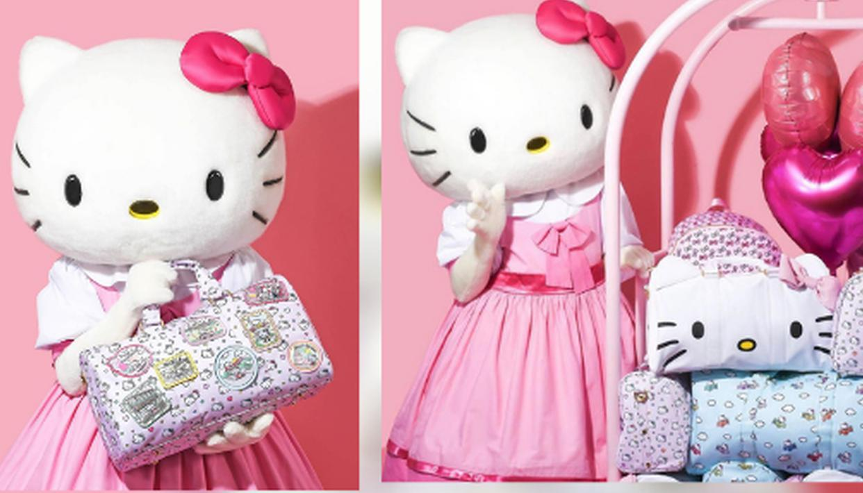 The Story behind 'Hello Kitty': Here's the dark theory about its Origin Story - Republic World