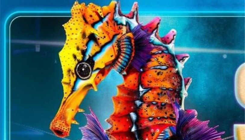 who is the seahorse on the masked singer