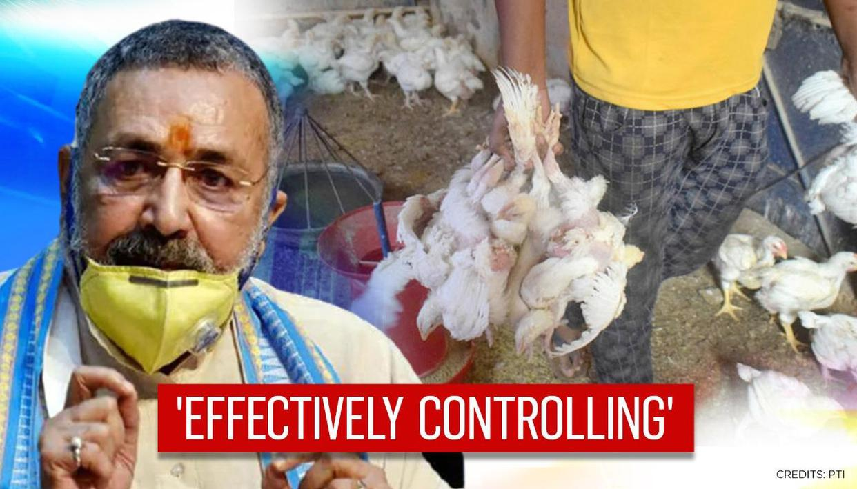 Centre says 'effectively controlling' spread of bird flu; 11 states affected so far in all