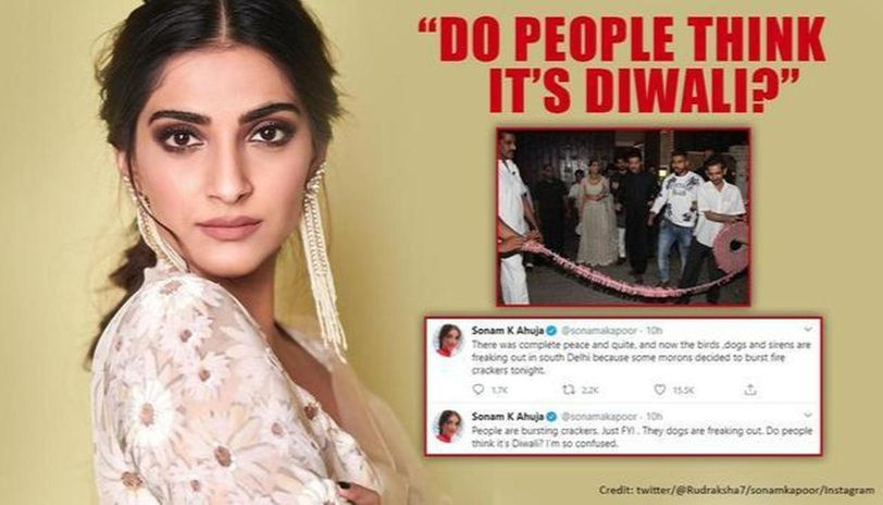 Sonam Kapoor unhappy over crackers troubling animals; netizens post her throwback pics