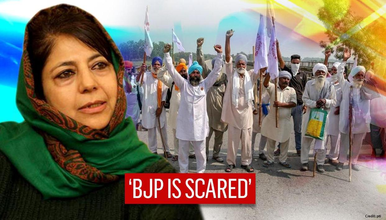 Mehbooba Mufti draws farmers' protest parallel to J&K; says BJP's nerves & failure visible