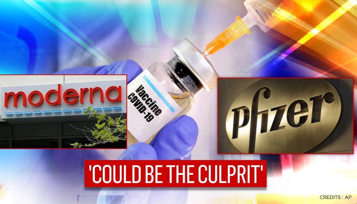 US FDA investigating allergic reactions to Pfizers COVID vaccine, indicates the culprit - Republic World