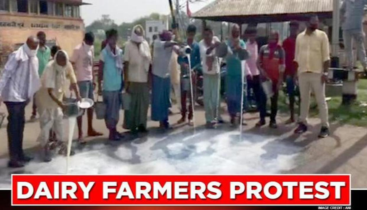 West Bengal: Dairy farmers in Asansol stage protest as they incur losses during lockdown - Republic World