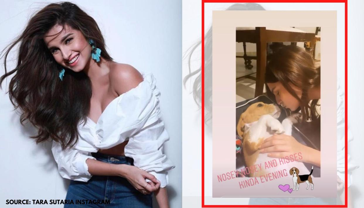 Tara Sutaria gives sneak-peek into her 'kisses kinda evening' with dog Bailey; see pic - Republic World