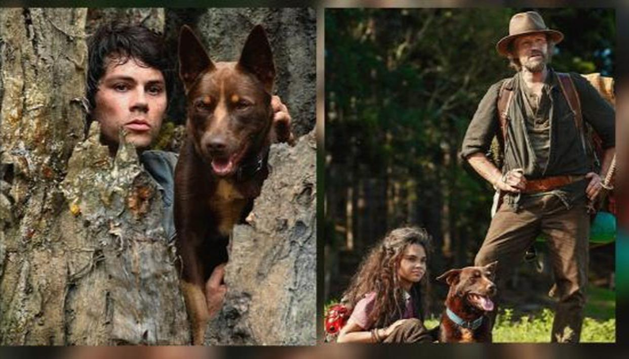 Where to watch Love and Monsters? Learn all about the Dylan O'Brien starrer - Republic World