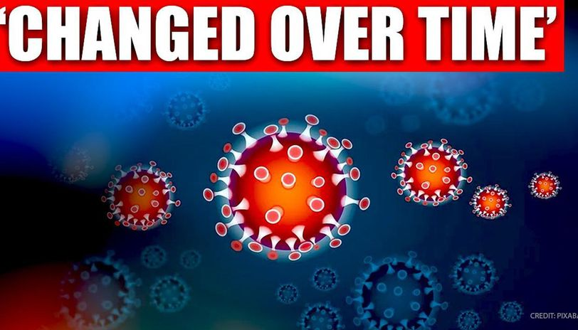 Expert reveals coronavirus behaved differently in patients in Northeast China