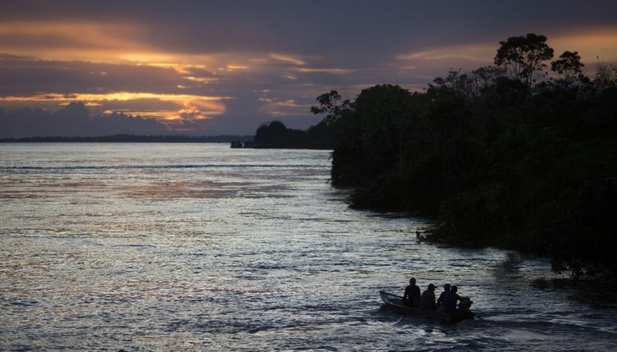 European banks financing Amazon rainforest oil trade despite climate pledge: Reports - Republic World