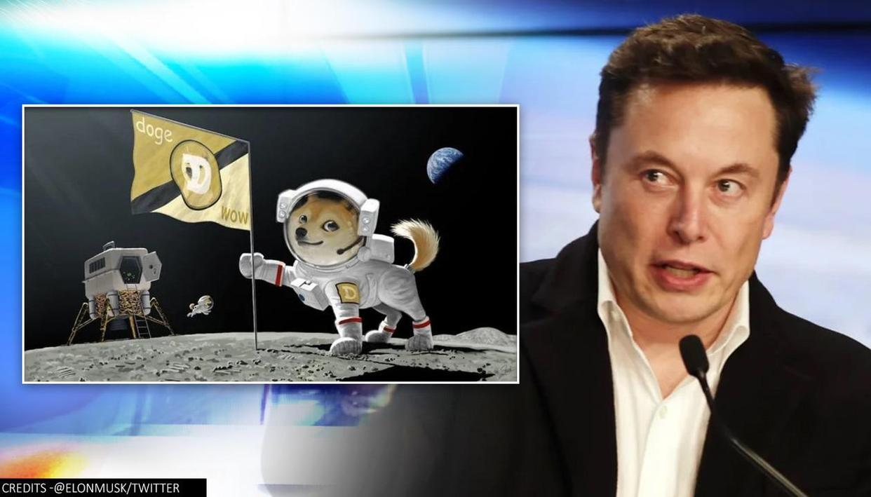 Elon Musk says SpaceX will put cryptocurrency Dogecoin on Moon, netizens can't keep calm