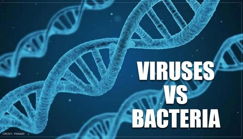 YC startup wants to utilize programmable viruses to combat bacteria