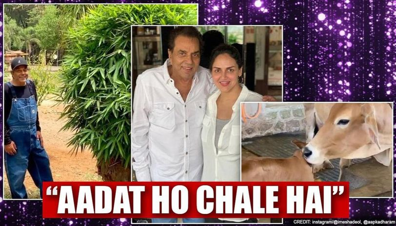After calf's birth, Dharmendra shares story of tree at farm; Esha has sweet observation