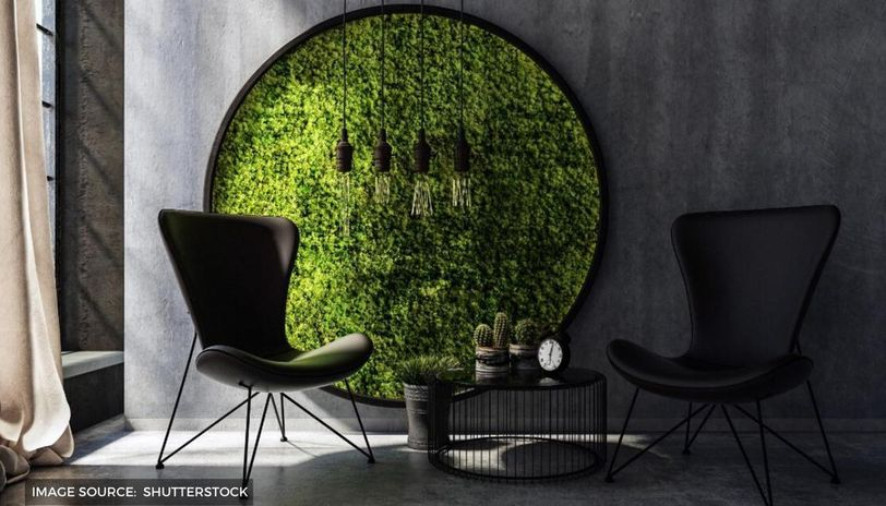 What is a moss frame and how to style them for a perfect home
