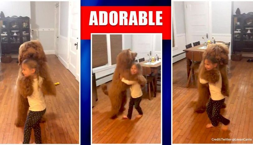 Feeling low? This video of girl dancing with a dog on Twitter is dripping love