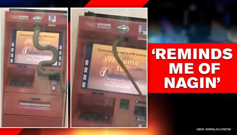 Snake slithers into ATM in Ghaziabad, netizens say it wants 'Hiss-ab' of its money