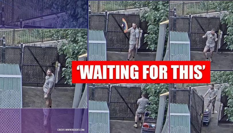 Zookeeper becomes famous after dancing on giraffe live-stream
