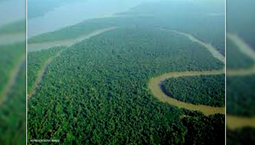 Brazil deploys armed forces to prevent deforestation in Amazon rainforest