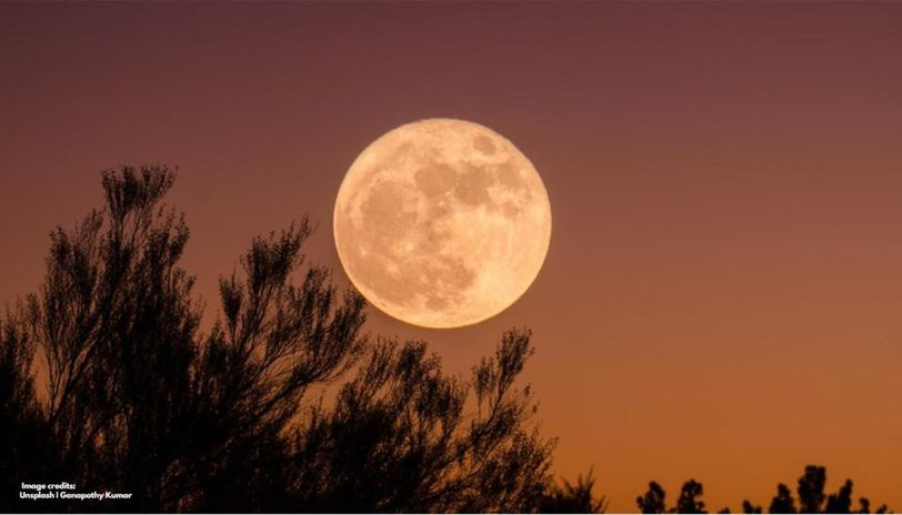Pink moon in India